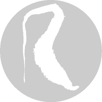 Logo Reconquista